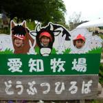 愛知牧場 (6)